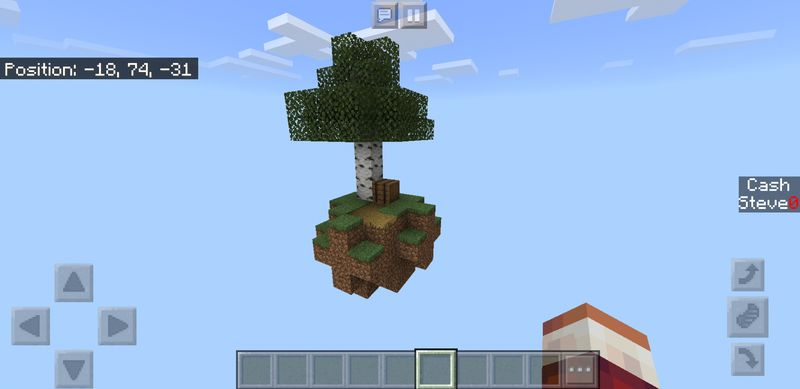 image for 1Skyblock Survival map 2019 for Minecraft PE